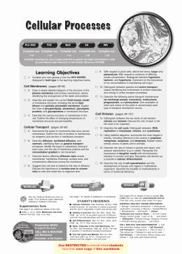Symbiotic Relationships Worksheet Good Buddies Luxury Studylib Essys Homework Help Flashcards Research