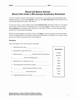 Temperature Conversion Worksheet Answers New Temperature Conversion Worksheet Answers