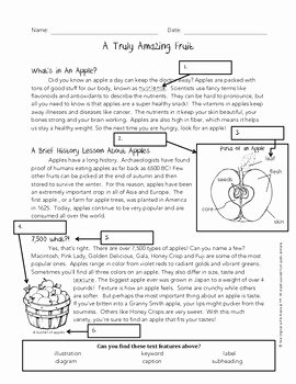 Text Features Worksheet 2nd Grade Awesome Using Text Features Worksheet Apples by Jessica Rivera