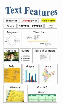 Text Features Worksheet 2nd Grade Fresh Nonfiction Text Features Poster by Positively Primary