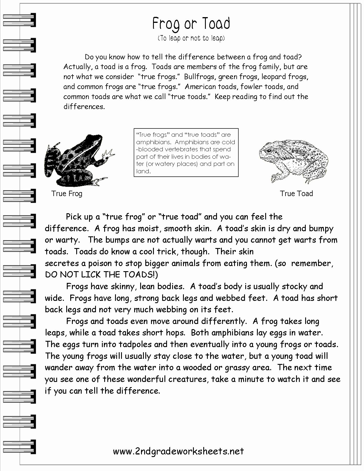 Text Features Worksheet 3rd Grade Awesome 15 Best Of Informational Text Features Worksheets