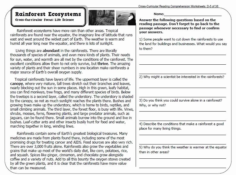 Text Features Worksheet 3rd Grade Fresh Expository Text Worksheets 3rd Grade
