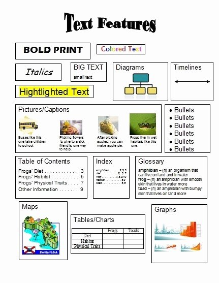 Text Features Worksheet 3rd Grade Inspirational Non Fiction Text Mrs Blackmore S Class