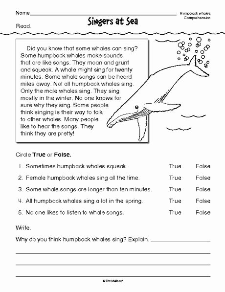 Text Features Worksheet 3rd Grade New Reading Prehension Worksheet Nonfiction Whales