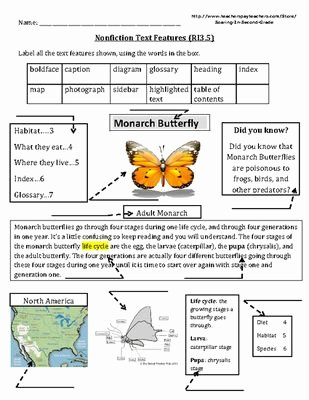 Text Features Worksheet 3rd Grade Unique 71 Best Non Fiction Activities Images On Pinterest