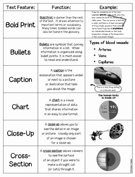 Text Features Worksheet Pdf New Nonfiction Text Features Posters Printables and Task