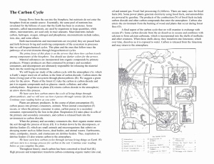 The Carbon Cycle Worksheet Answers Inspirational Carbon Cycle Homework Answer Key