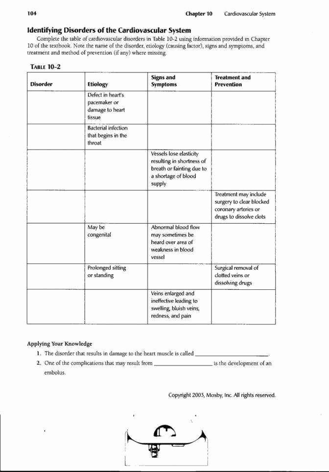 The Cardiovascular System Worksheet Awesome Circulatory System Worksheet