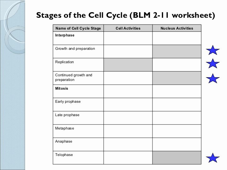 The Cell Cycle Worksheet Beautiful Sci 9 Lesson 2 Feb 23 Ch 5 1 Mitosis