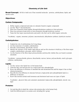 The Chemistry Of Life Worksheet Awesome Chapter 2—chemistry Of Life Review Worksheet