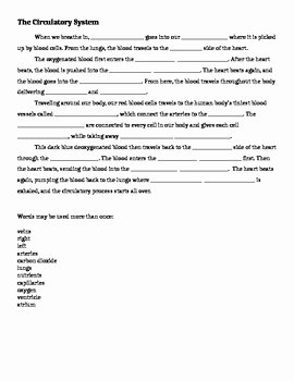 The Circulatory System Worksheet Unique Circulatory System Fill In the Blank by Caffeinate and