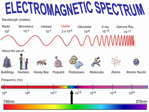 The Electromagnetic Spectrum Worksheet Awesome Electromagnetic Spectrum Worksheet Marketplace Activity