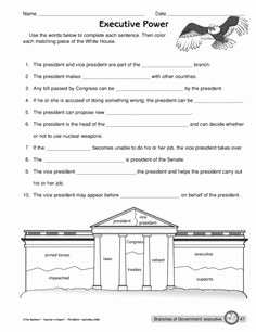 The Executive Branch Worksheet Best Of Three Branches Of Government Lesson and Worksheets