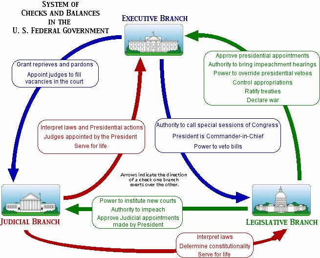 The Executive Branch Worksheet Lovely Checks and Balances American Government