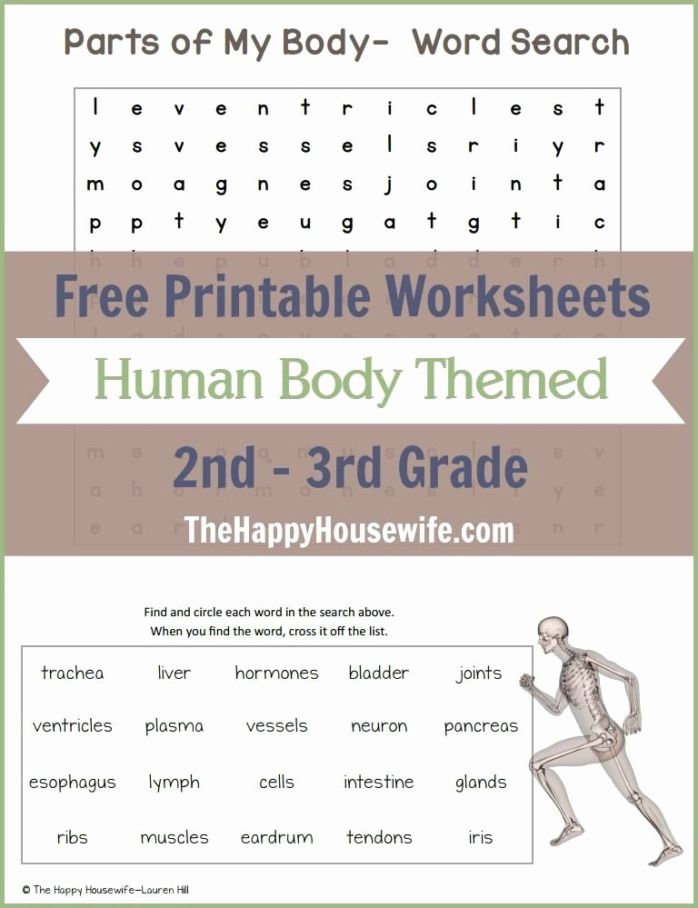 The Language Of Science Worksheet Beautiful Human Body themed Worksheets Free Printables