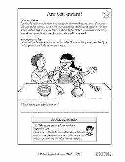 The Language Of Science Worksheet Luxury 10 Best Vowel sounds Images On Pinterest