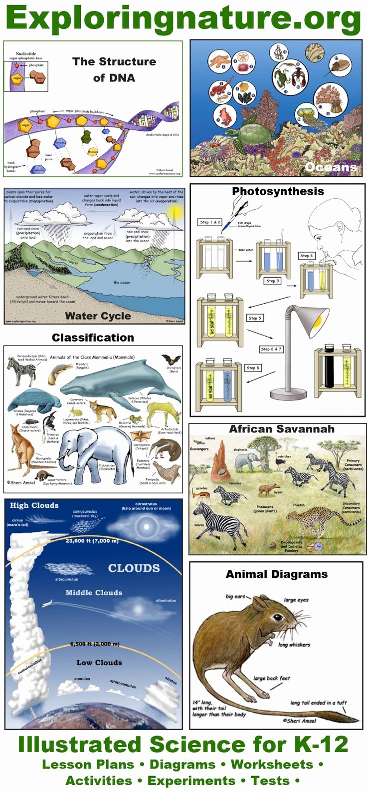 The Nature Of Science Worksheet Elegant 17 Best Images About Exploring Nature On Pinterest