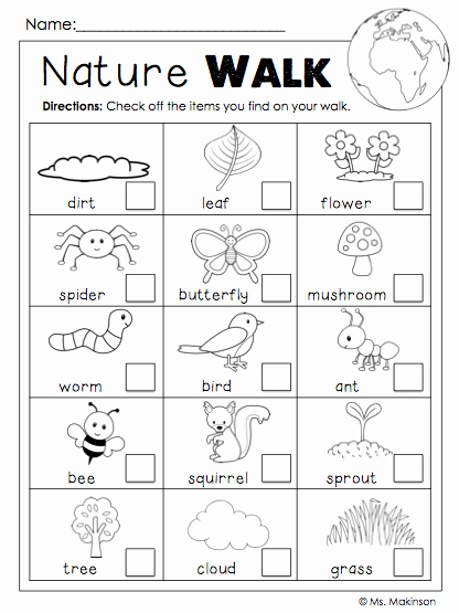 The Nature Of Science Worksheet Fresh Earth Day Free Science Ideas