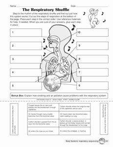 The Respiratory System Worksheet Beautiful 15 Best Of 5 Senses Worksheets for 4th Grade 2