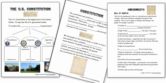 The Us Constitution Worksheet Best Of U S Civics and Government Unit 3 Branches Of Government