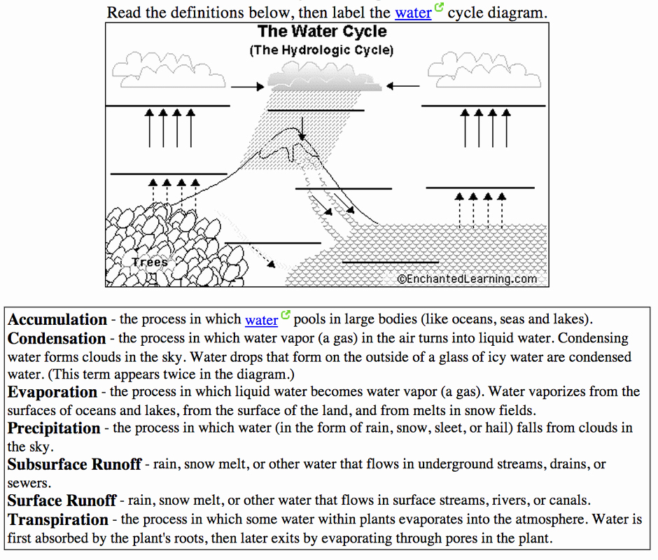 The Water Cycle Worksheet Answers Beautiful 6th Grade the Water Cycle Ms Sylvester S Science Page