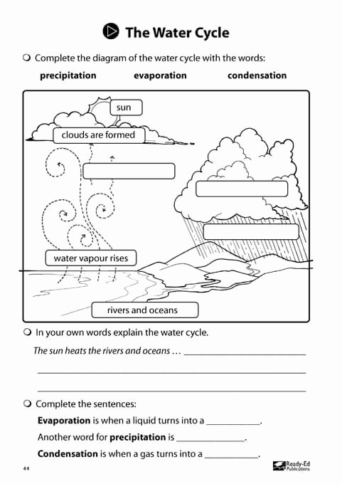 The Water Cycle Worksheet Answers Beautiful Junior Scientists Book 2 the Water Cycle Activity Sheet