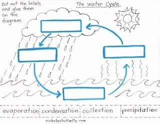 The Water Cycle Worksheet Answers Fresh Water Cycle Worksheets Label