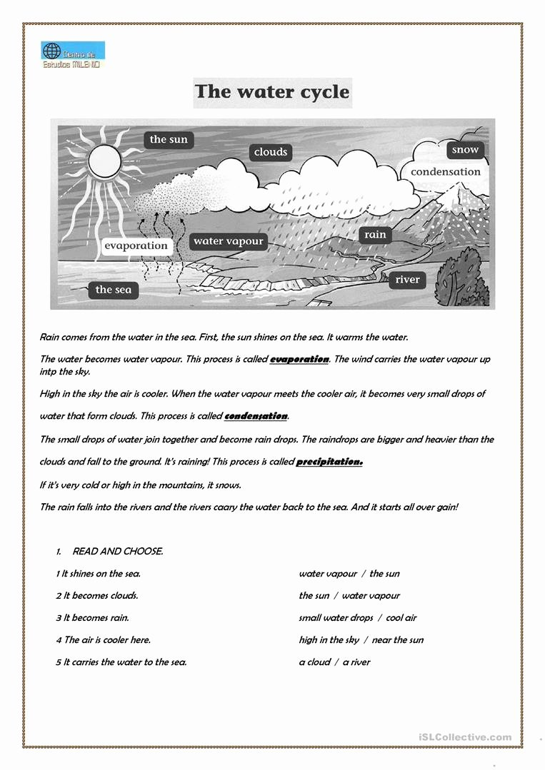 The Water Cycle Worksheet Answers Lovely the Water Cycle Worksheet Free Esl Printable Worksheets