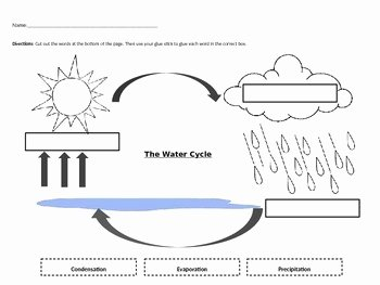 The Water Cycle Worksheet Answers Luxury Water Cycle Worksheet by Jocelyn Hendershot