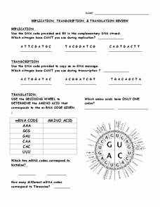 Transcription and Translation Practice Worksheet Beautiful Replication Transcription and Translation Review 9th