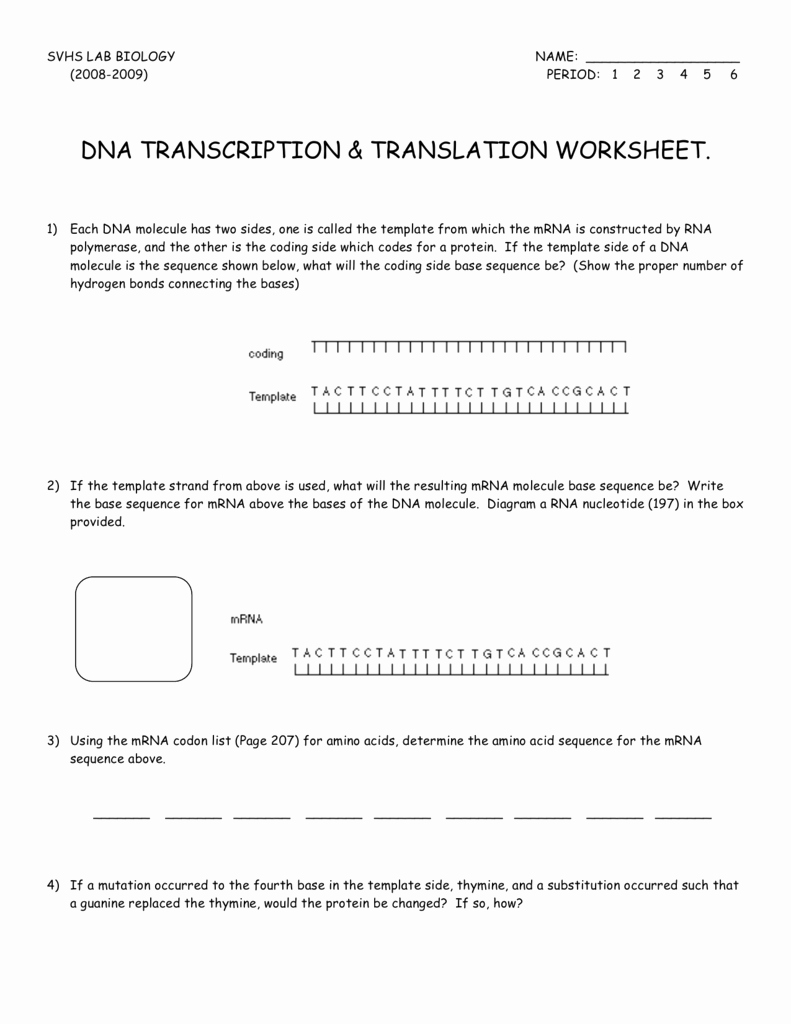 Transcription and Translation Practice Worksheet Inspirational Dna Transcription & Translation Worksheet