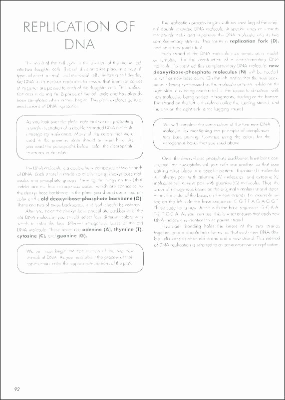 Transcription and Translation Practice Worksheet Lovely Transcription and Translation Practice Worksheet Answers