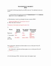 Transcription and Translation Worksheet Answers New Transcription and Translation Worksheet[1] with Key