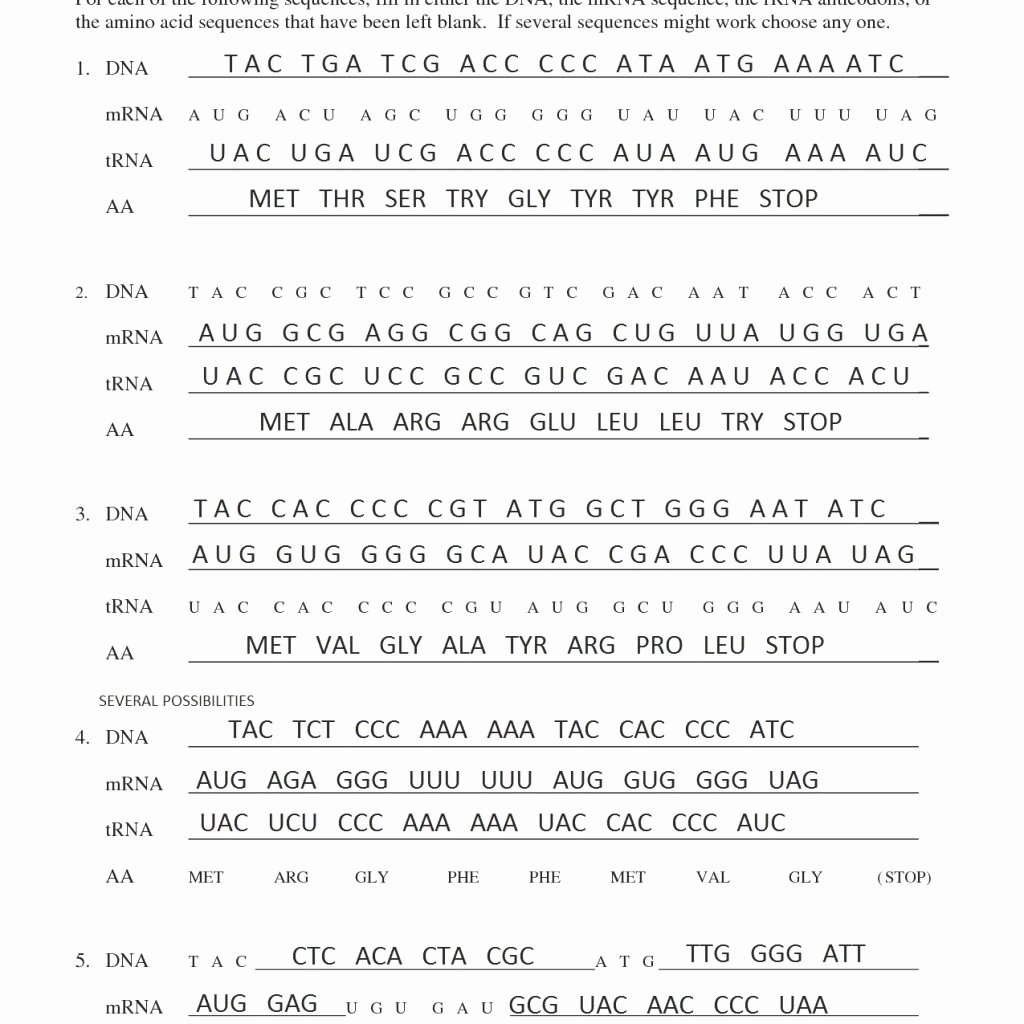 Transcription and Translation Worksheet Fresh Cool Transcription and Translation Practice Worksheet Key