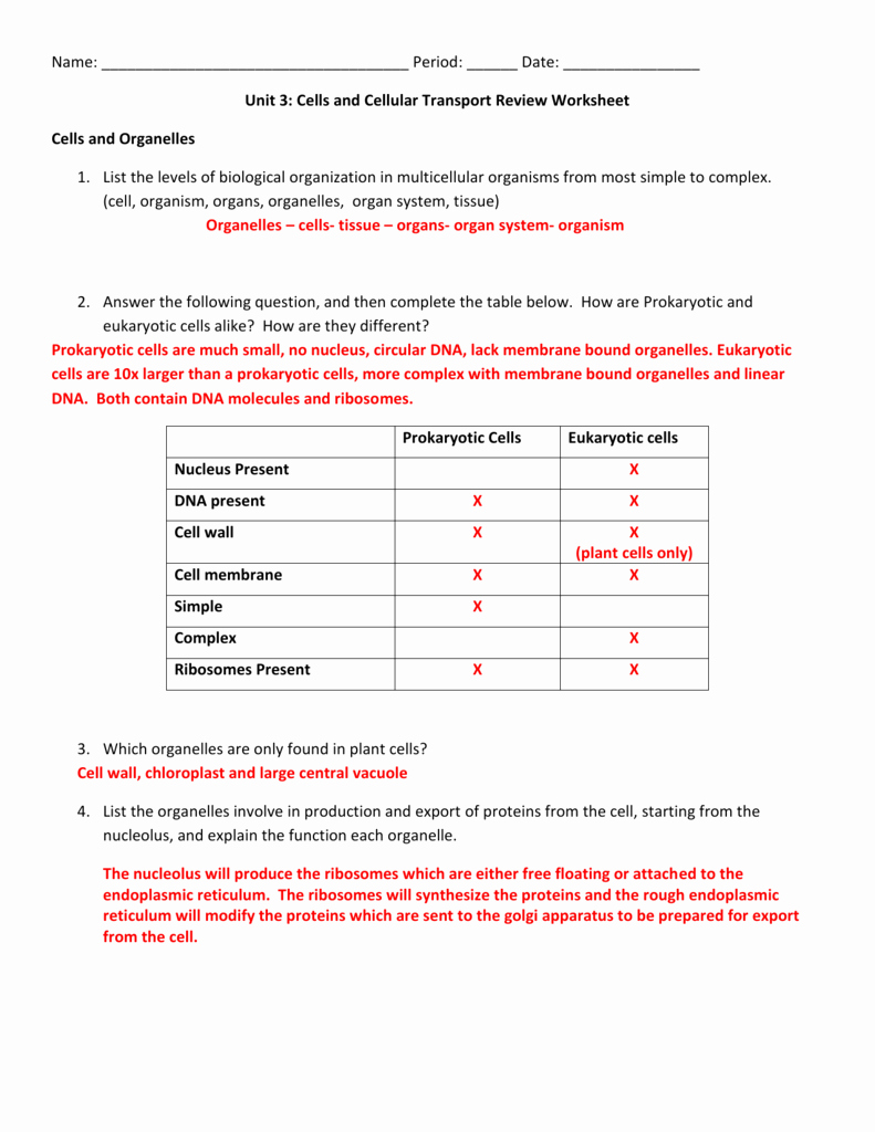 Transport In Cells Worksheet Answers Awesome Cellular Structure and Function Section 4 Cellular