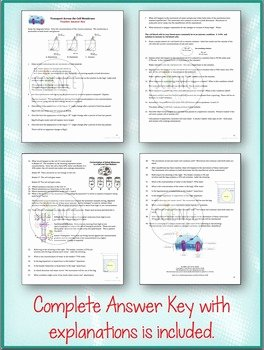 Transport In Cells Worksheet Answers Elegant Cell Transport Worksheet Osmosis Diffusion by Amy Brown