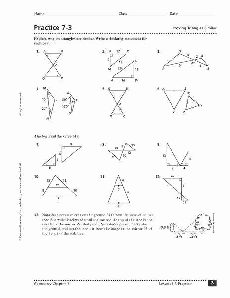 Triangle Congruence Worksheet Answer Key Fresh Similar Triangles Worksheet
