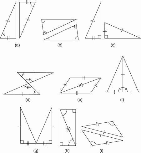 Triangle Congruence Worksheet Answer Key Unique Triangle Congruence Worksheet