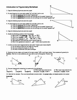 Introduction to Trigonometry worksheet with Answer Key Editable