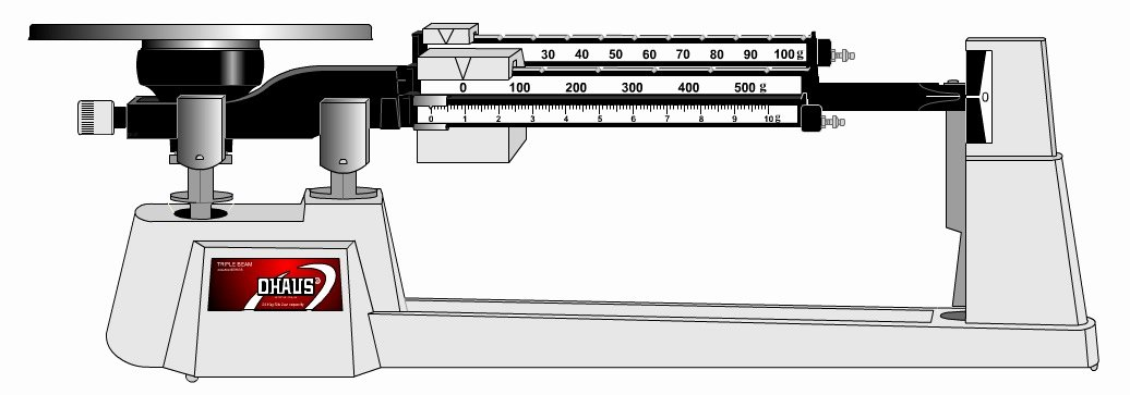 Triple Beam Balance Practice Worksheet Fresh Becker Timothy Life Science