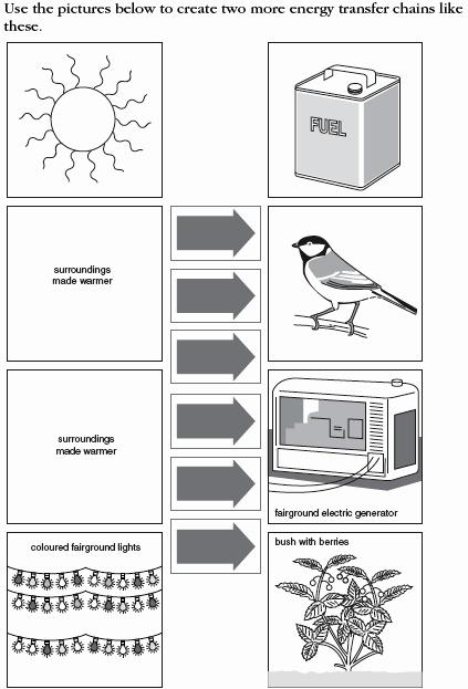 Types Of Energy Worksheet New 12 Best Of Energy Diagrams Worksheet Types Of