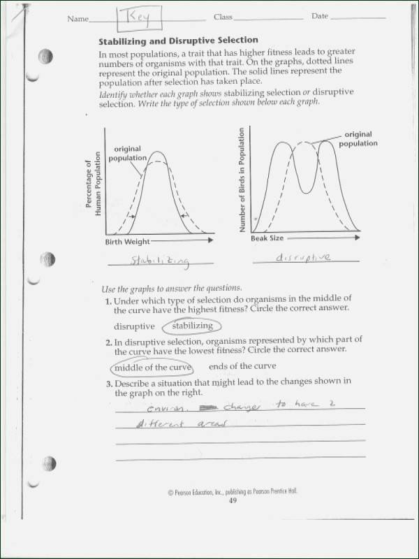Types Of Evolution Worksheet Fresh Natural Selection Worksheet