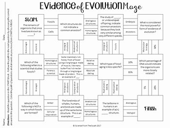 Types Of Evolution Worksheet Luxury Evidence Of Evolution Maze Worksheet for Review or