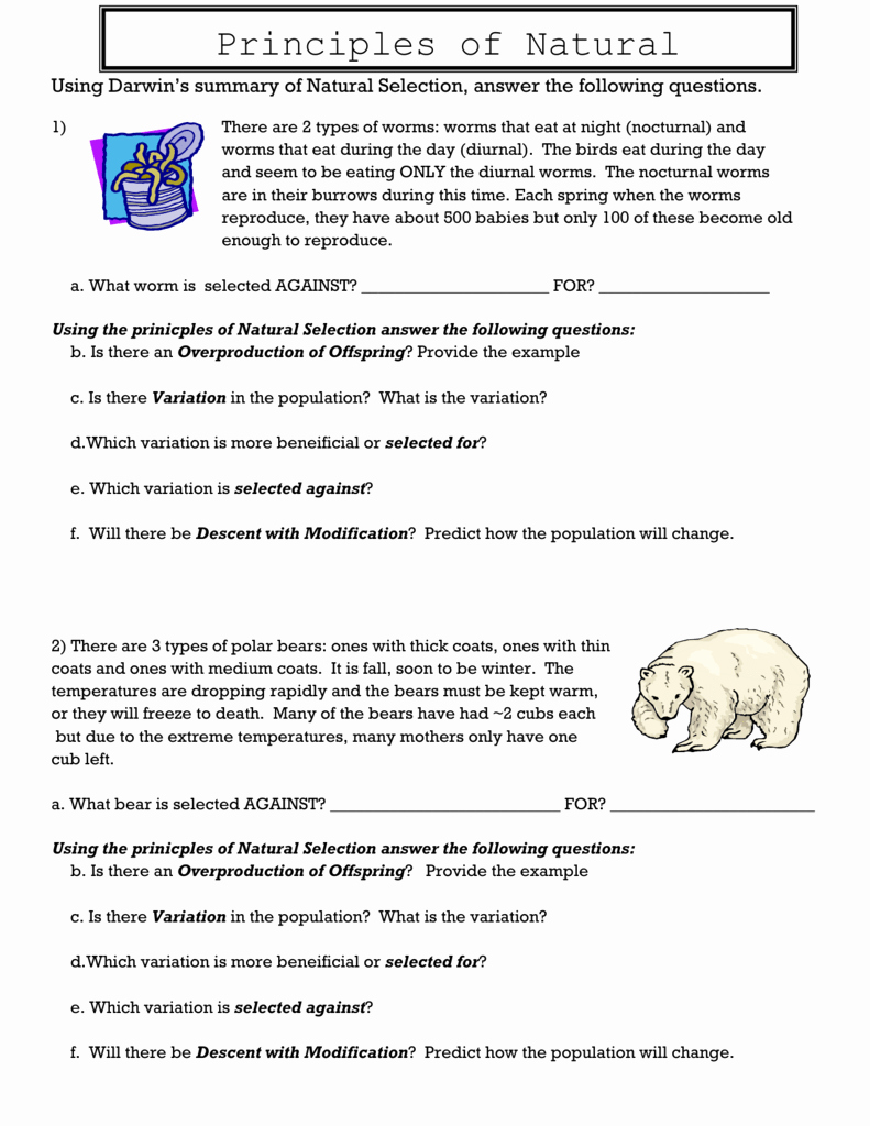 Types Of Natural Selection Worksheet Awesome Principles Of Natural Selection