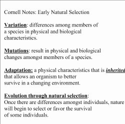 Types Of Natural Selection Worksheet Elegant Critical Thinking Understanding Natural Selection