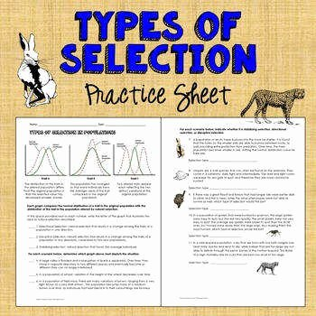 Types Of Natural Selection Worksheet Inspirational Natural Selection Worksheet
