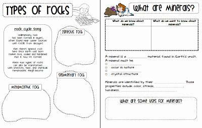 Types Of Rock Worksheet Unique Types Rocks Worksheet the Best Worksheets Image