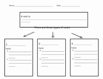 Types Of Rocks Worksheet Pdf Awesome Types Of Rocks Graphic organizer Differentiated by