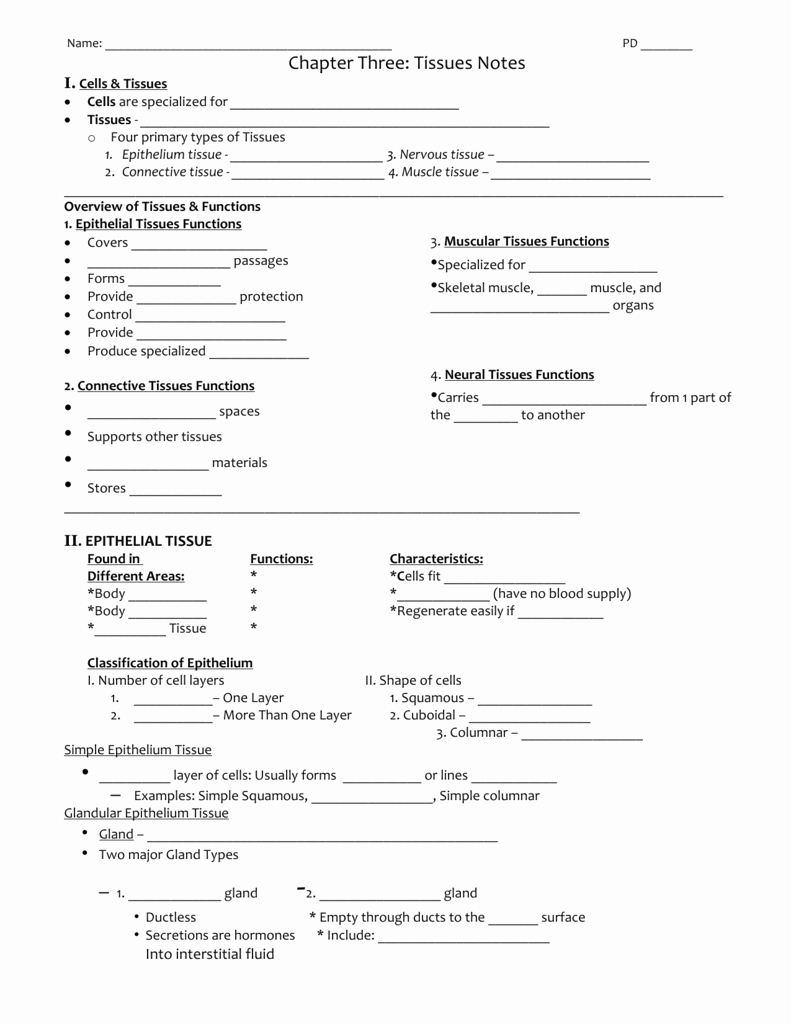 Types Of Tissues Worksheet Luxury Chapter Three Part 2 Tissues Notes