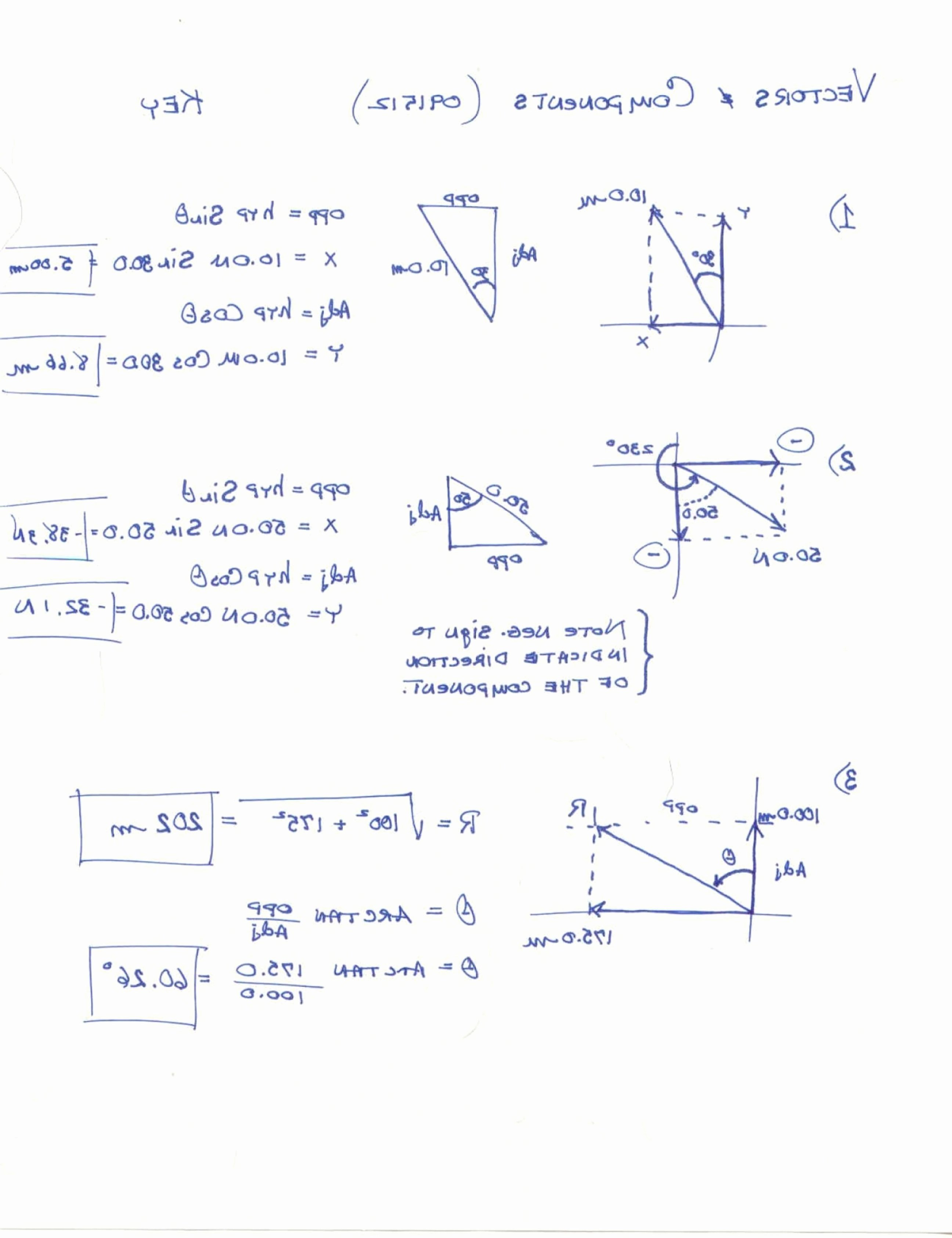 Vector Addition Worksheet with Answers Elegant Resultant Vectors Worksheets Answers